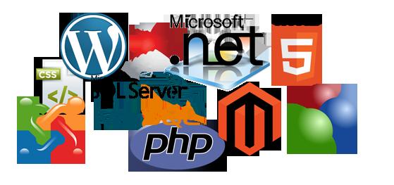 Web-Development7
